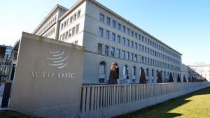 OMC divulgação