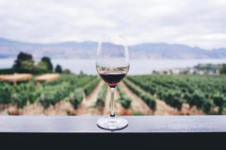 wine unsplash