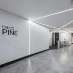 banco pine divulgacao